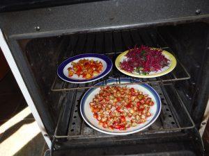 Drying rose hips